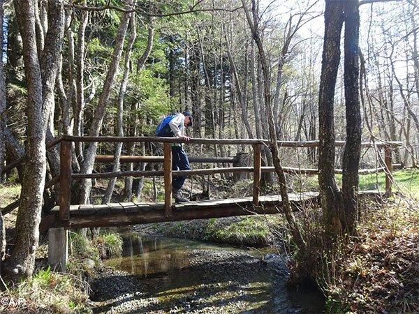 val-trebbia-passeggiata-nel-bosco-delle-fate-ponte