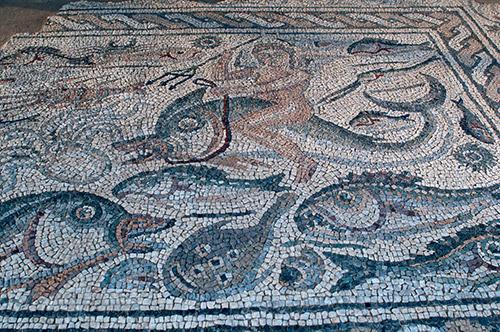 Luni museo archeologico antica città romana mosaico ancora integro
