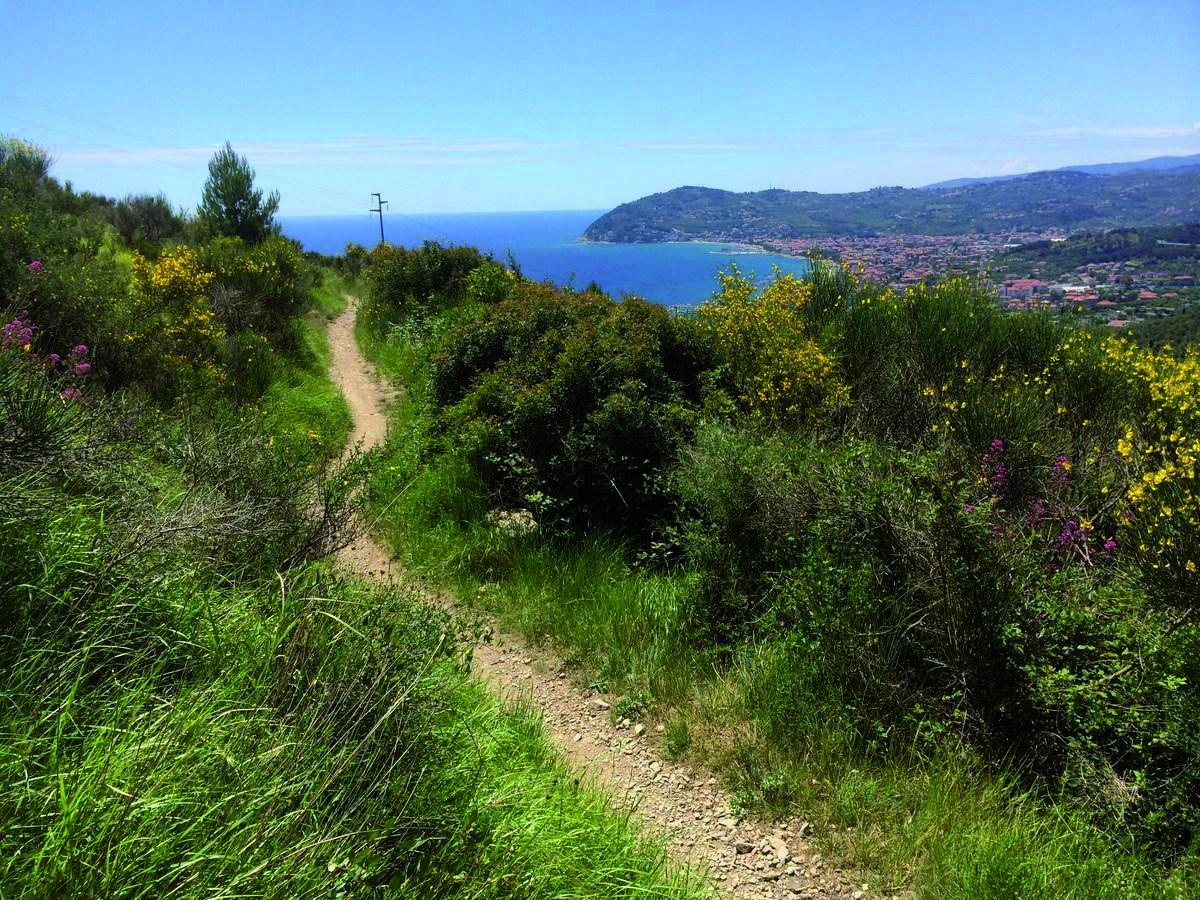 sentiero con vista parco del Ciapà